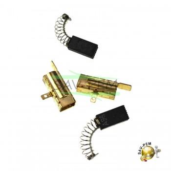 Charbons pour perforateur BOSCH PBH2900FRE