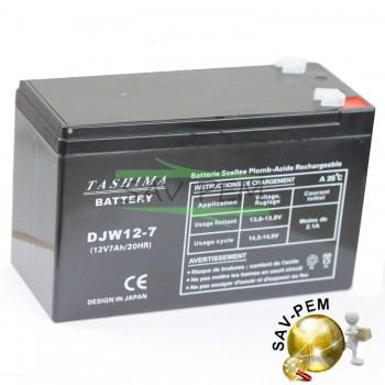 Batterie 12V 7Ah pour tracteur GGP